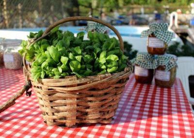 il-ciliegio-fattoria-didattica-genova-64