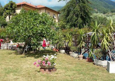 il-ciliegio-fattoria-didattica-san-desiderio-11